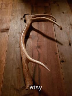 Killer Shed Elk Antler Handle for Door, Barn Door, Refrigerator, Ranch House, Man Cave, Gun Room, Hunting Lodge, Cabin, Log Home